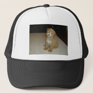 Adorable Schnoodle puppy Trucker Hat