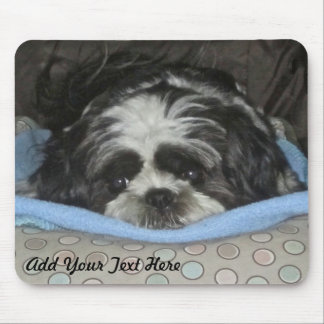 Adorable Shih Tzu Puppy Mouse Pad to Personalize