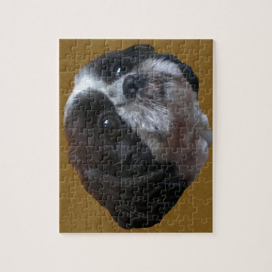 Adorable Shih tzu Rico Jigsaw Puzzle