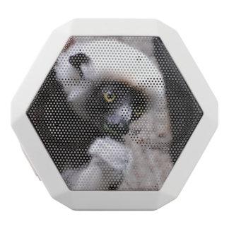 Adorable Sifaka Lemur Eating White Boombot Rex Bluetooth Speaker