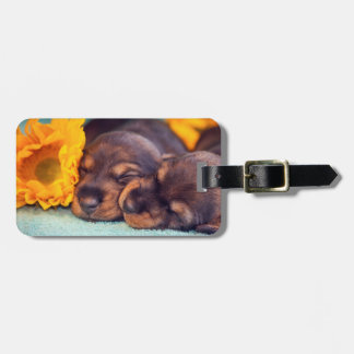 Adorable sleeping Doxen puppies Luggage Tag