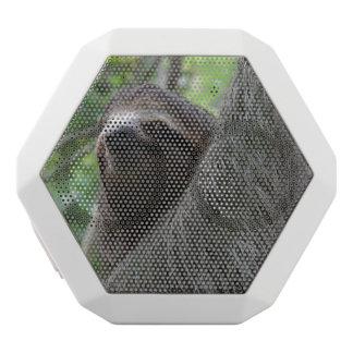 Adorable Sloth White Boombot Rex Bluetooth Speaker