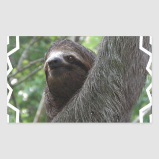 Adorable Sloth Rectangle Sticker