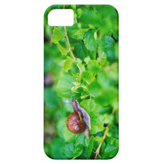 Adorable snail in a green garden case for the iPhone 5