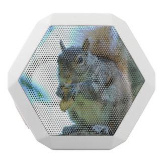 Adorable Squirrel White Boombot Rex Bluetooth Speaker