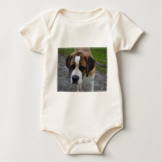 Adorable St Bernard Baby Bodysuit