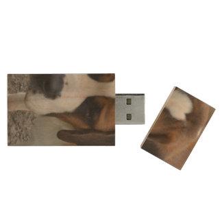 Adorable St Bernard Wood USB 2.0 Flash Drive