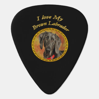 Adorable sweet brown labrador canine puppy dog plectrum
