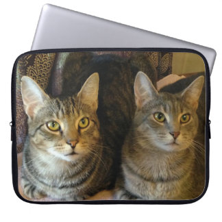 Adorable Tabby Cats Kitty Electronics Bag