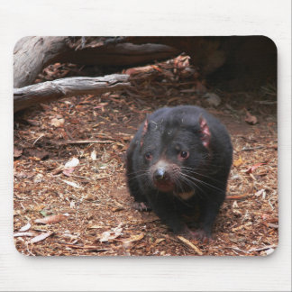 Adorable Tasmanian Devil Mousepad