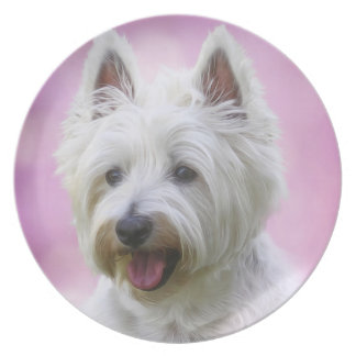 Adorable west highland white terrier plate