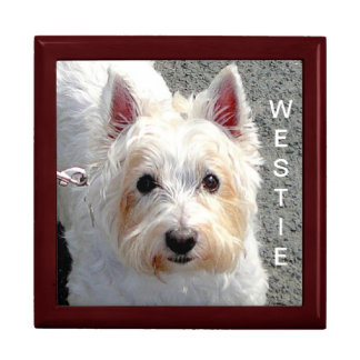 """Adorable Westie Dog"" Large Square Gift Box"