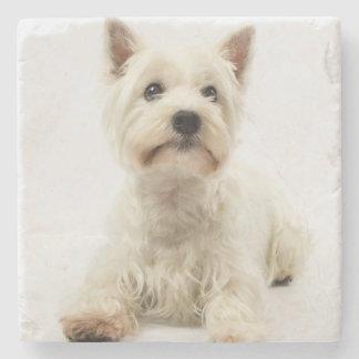 Adorable White West Highland Terrier Stone Coaster