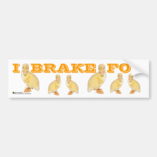 Adorable Yellow Duckling Photograph Bumper Stickers