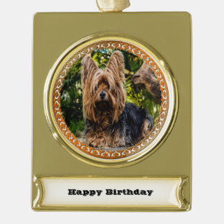 Adorable Yorkshire brown and black terrier Gold Plated Banner Ornament