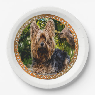 Adorable Yorkshire brown and black terrier Paper Plate