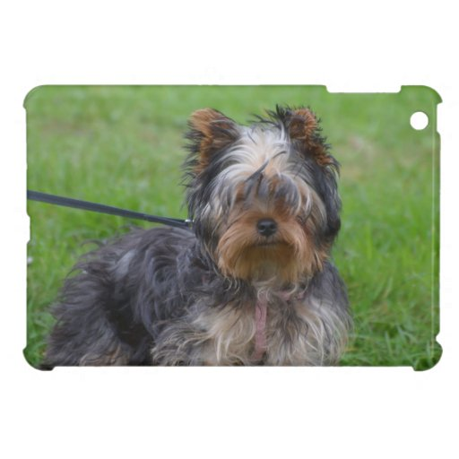 Adorable Yorkshire Terrier Cover For The iPad Mini