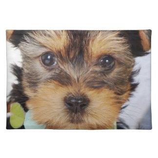 Adorable Yorkshire Terrier Placemat