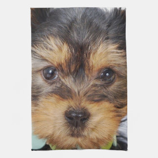 Adorable Yorkshire Terrier Tea Towel