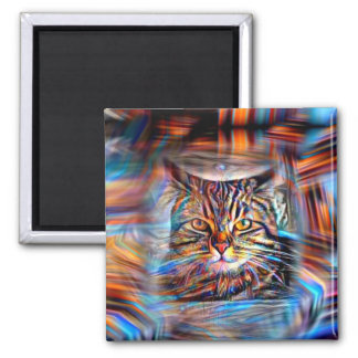 Adrift in Colors Abstract Revolution Cat Magnet