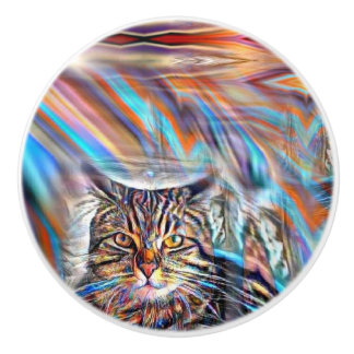 Adrift in Colors Tropical Sunset Cat Ceramic Knob