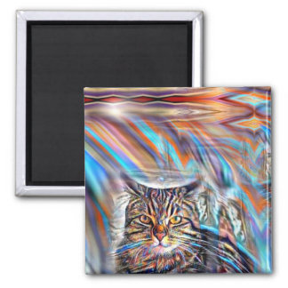 Adrift in Colors Tropical Sunset Cat Magnet