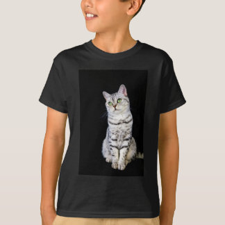 Adult british short hair cat on black background T-Shirt