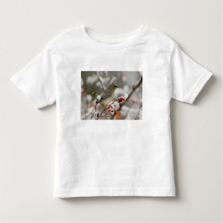Adult Cedar Waxwing on hawthorn with snow, 3 Toddler T-Shirt