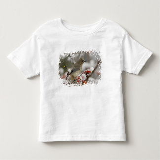 Adult Cedar Waxwing on hawthorn with snow, 3 Tshirt