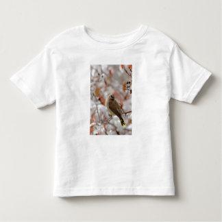 Adult Cedar Waxwing on hawthorn with snow, Tee Shirt