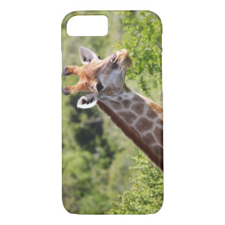 Adult Giraffe Face and Neck iPhone 7 Case