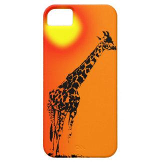 Adult giraffe in sunset IPhone case