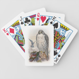 Adult Iceland Falcon Gould Birds of Great Britain Bicycle Playing Cards