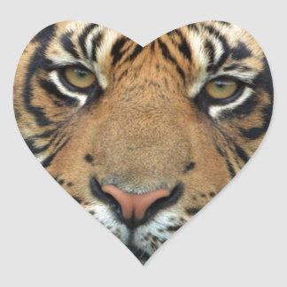 Adult Tiger Heart Sticker