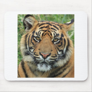 Adult Tiger Mouse Pad