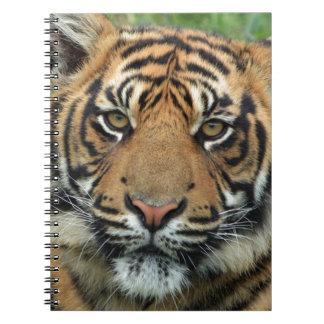 Adult Tiger Notebook