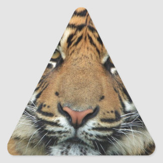 Adult Tiger Triangle Sticker