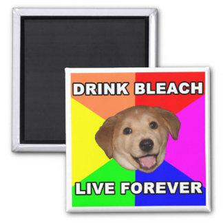 Advice Dog Square Magnet