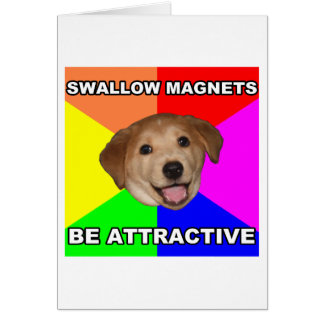 Advice Dog Swallow Magnets Card