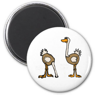 AE- Ostriches in Sand 6 Cm Round Magnet