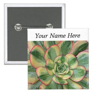 Aeonium 'Sunburst' pin-back button name tag
