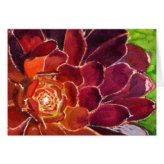 Aeonium watercolor card