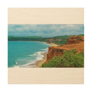 Aerial Seascape Scene Pipa Brazil Wood Print