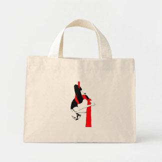 Aerial Silks Bag