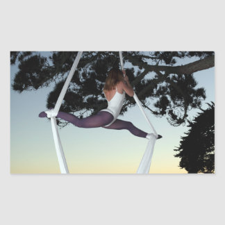 Aerial Silks In Tree Rectangular Sticker