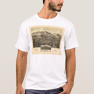 Aerial View of Millerton, New York (1887) T-Shirt