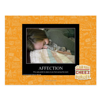 Affection Postcard