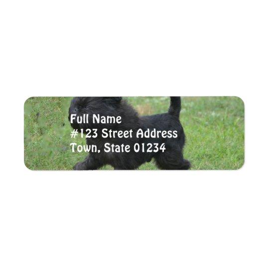 Affenpinscher Return Address Label