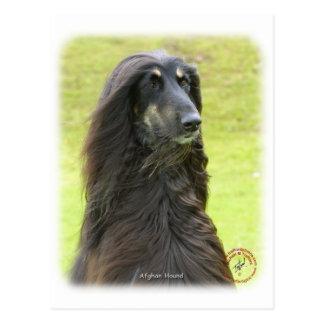 Afghan Hound 9R71D-30 Postcard