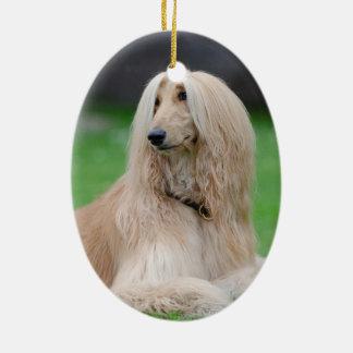 Afghan Hound dog beautiful photo oval ornament